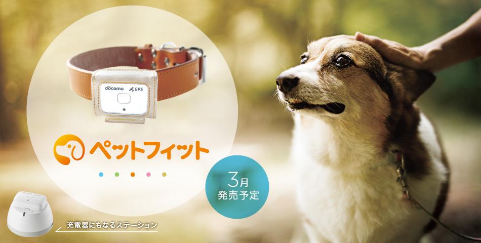 愛犬の状態や居場所が確認できる「ペットフィット」が提供終了になる。